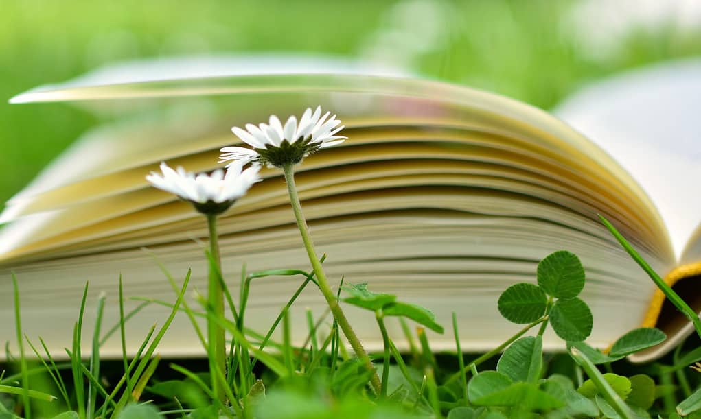 7 Sage Pieces Of Homeschooling Advice 4