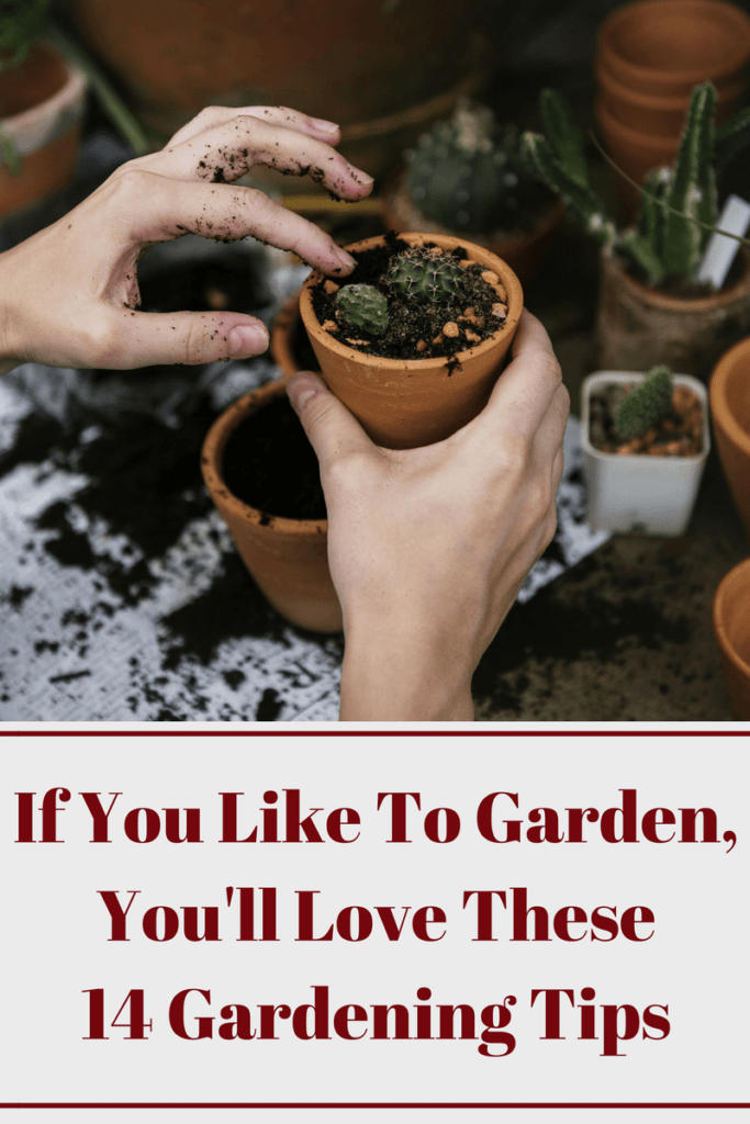 If You Like To Garden, You'll Love These 14 Gardening Tips 2