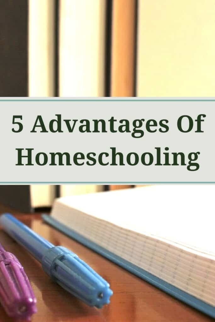 When it comes to making up your mind about whether or not to homeschool, these advantages are something that you may want to know.