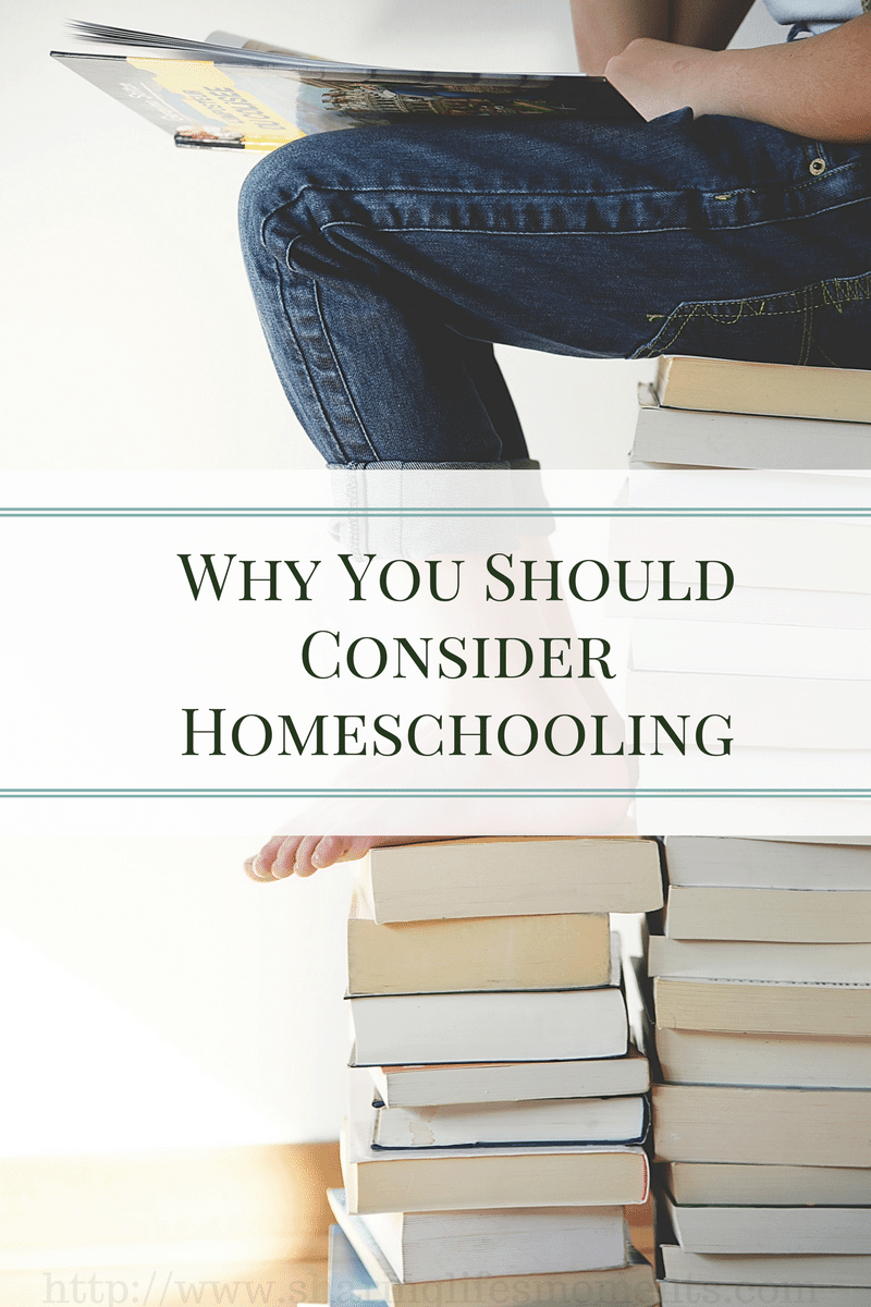 Why You Should Consider Homeschooling - Homeschooling is becoming popular for a solid set of reasons. See why I feel you should consider it as an option.