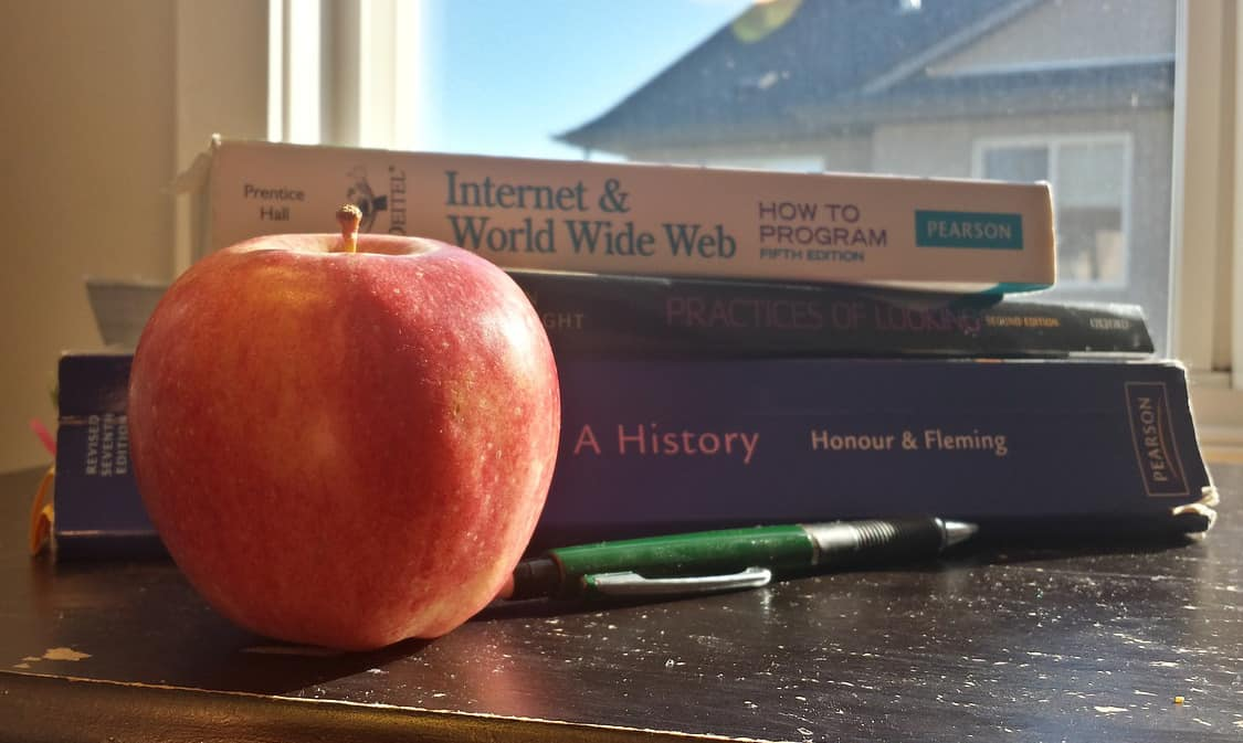 Why You Should Consider Homeschooling 2