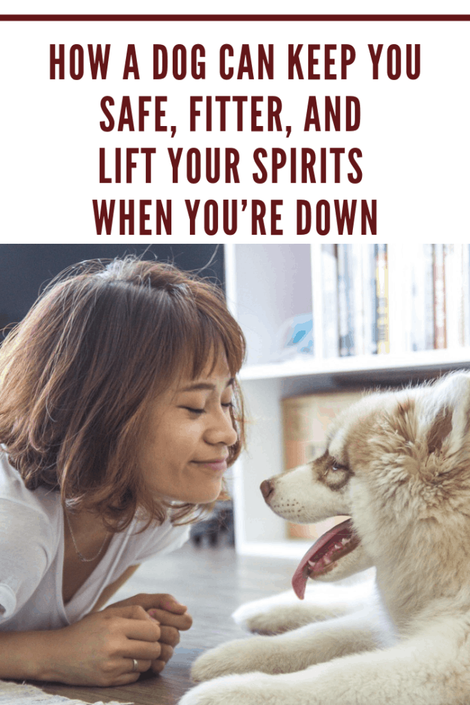 Owning a dog can truly improve your overall health. Learn how a dog can keep you safe, fitter, and lift your spirits here.