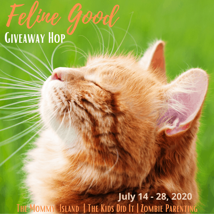 Enter to win many awesome prizes in this giveaway hop from myself and many other bloggers. #giveaway #giveawayhop #winit #win #sharinglifesmoments