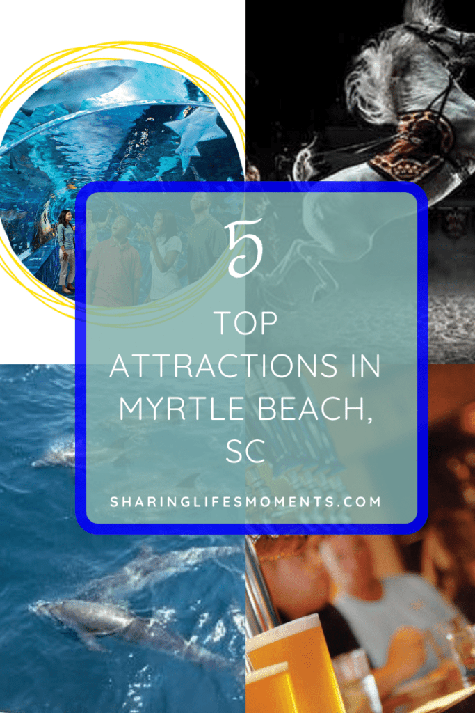 5 Top Attractions in Myrtle Beach, SC 1