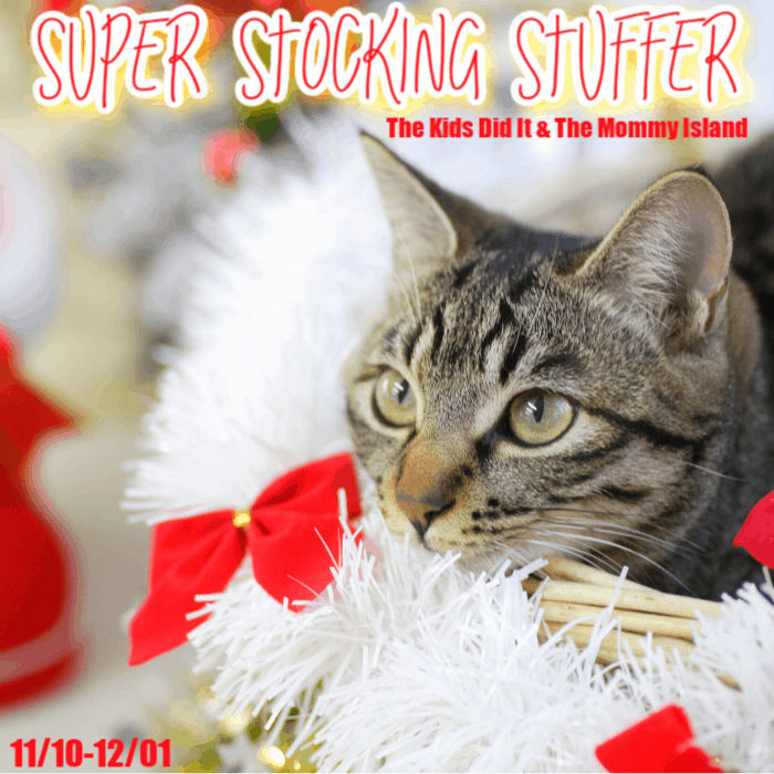 Enter to win .@Visa gift card in this #giveaway with#SuperStockingStuffer #Holiday2020 #sharinglifesmoments
